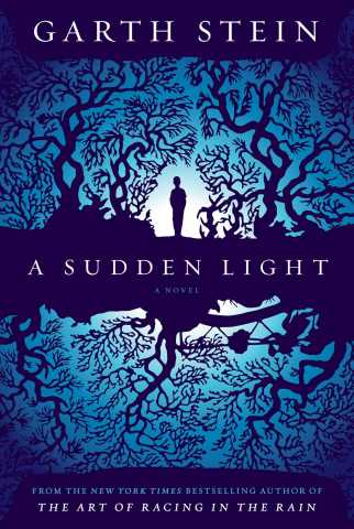 sudden light cover