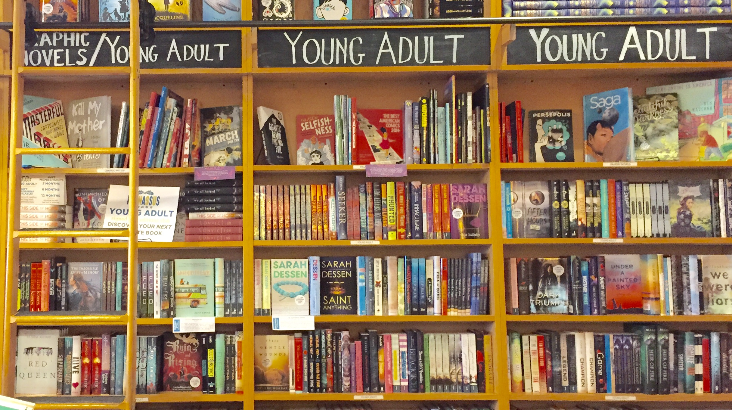 List of young adult literature opinion